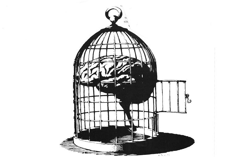 Приморавање на слободу
