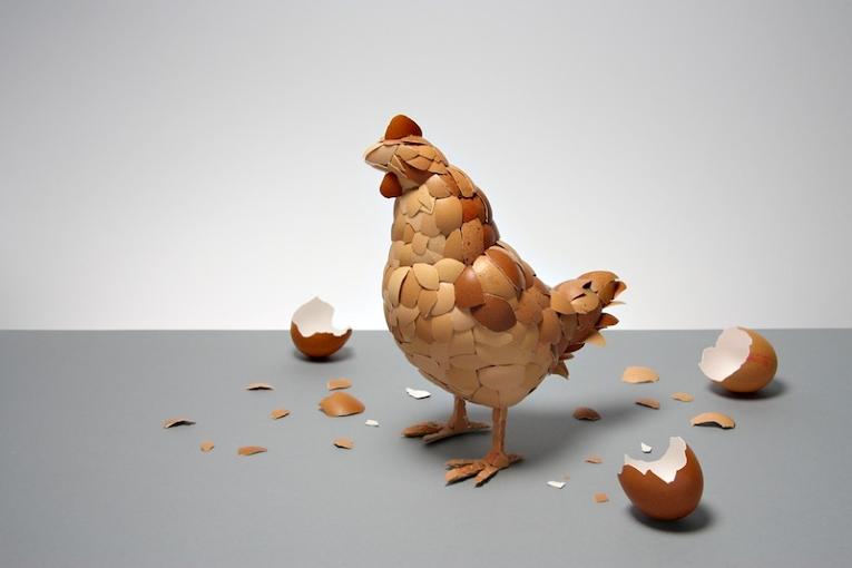 Шта је старије: Кокошка или јаје?