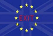 Бранко Павловић: ЕУ после Британије