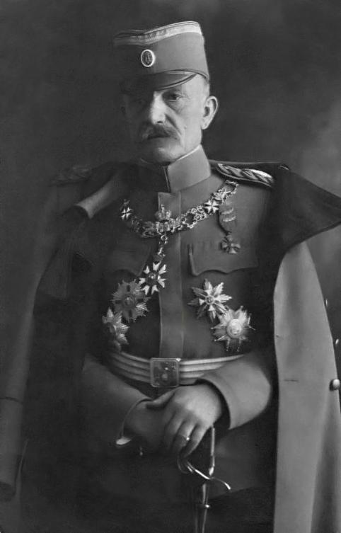 vojvoda-misic