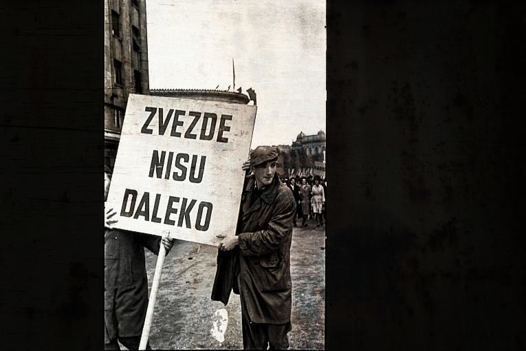 Ненад Ћурковић: Брутално убиство с предумишљајем – други део